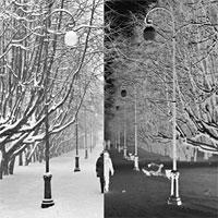 «Настроение» / фотовыставка Елены Шалимо