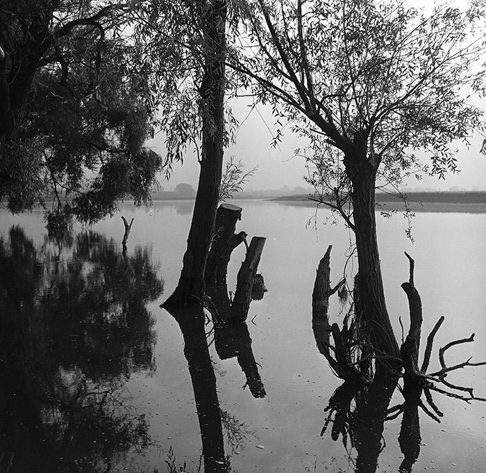Фото: Юрий Васильев